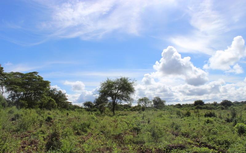 Kenya_climate4